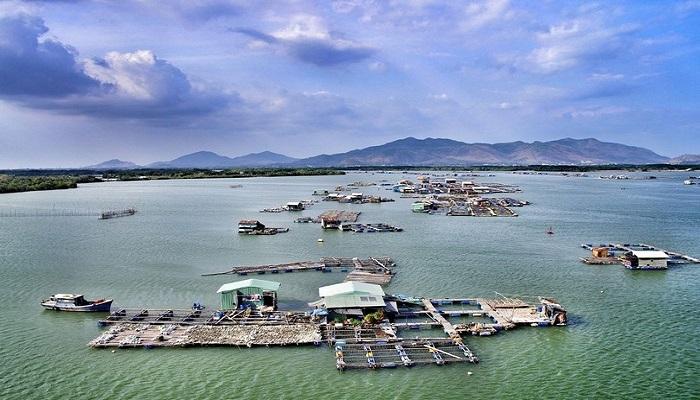 Long Sơn Vũng Tàu