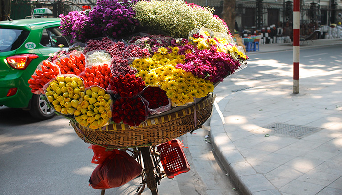 gánh hàng hoa Hà Nội