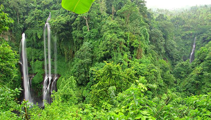 Thác Sekumpul như một tấm lụa giữa rừng xanh