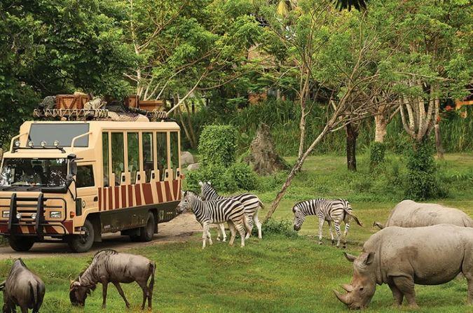 Nơi dành cho những du khách muốn khám phá thế giới động vật hoang dã