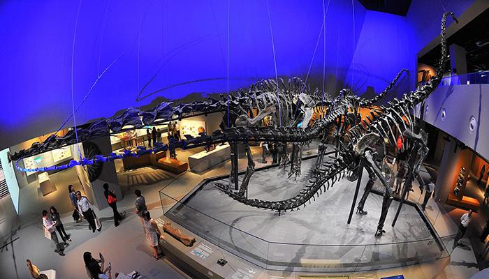 Những con khủng long thời tiền sử