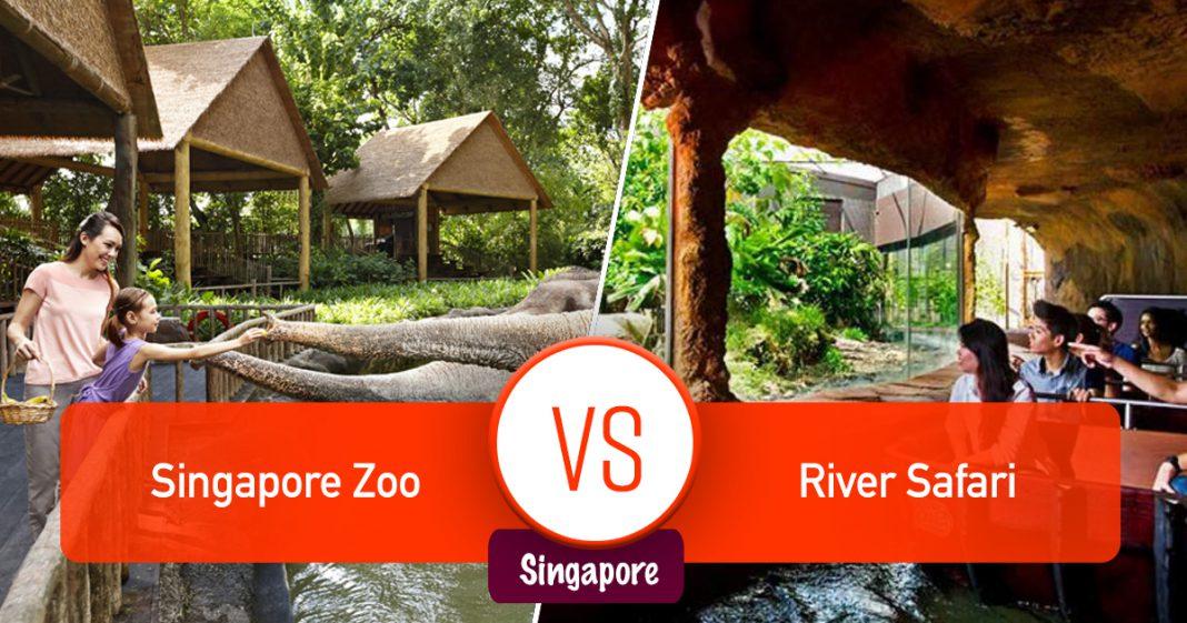 Singapore Zoo và River Safari Singapore