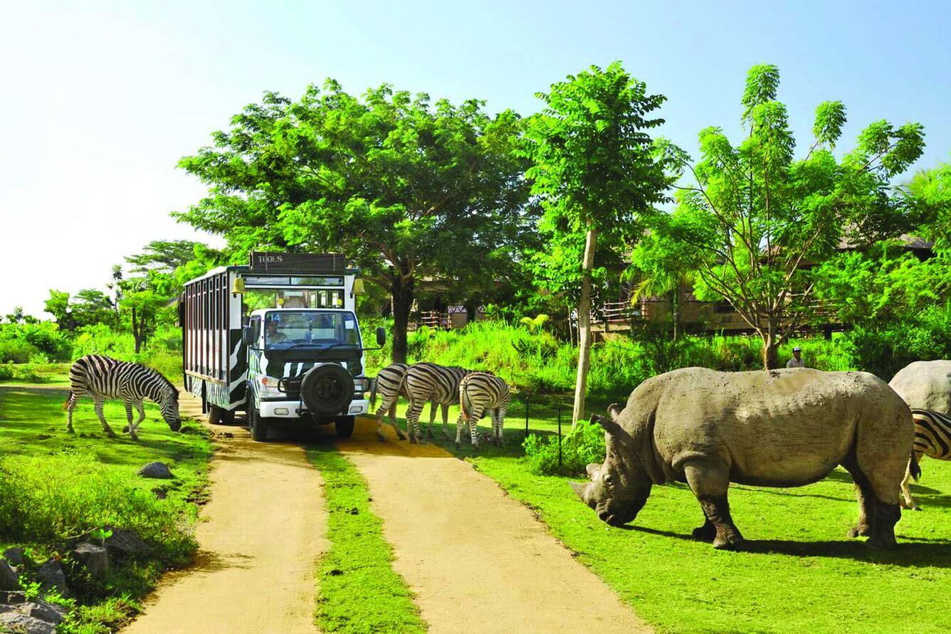 Du khách sẽ có cảm nhận chân thực khi tham quan khu vực bảo tồn bán hoang dã