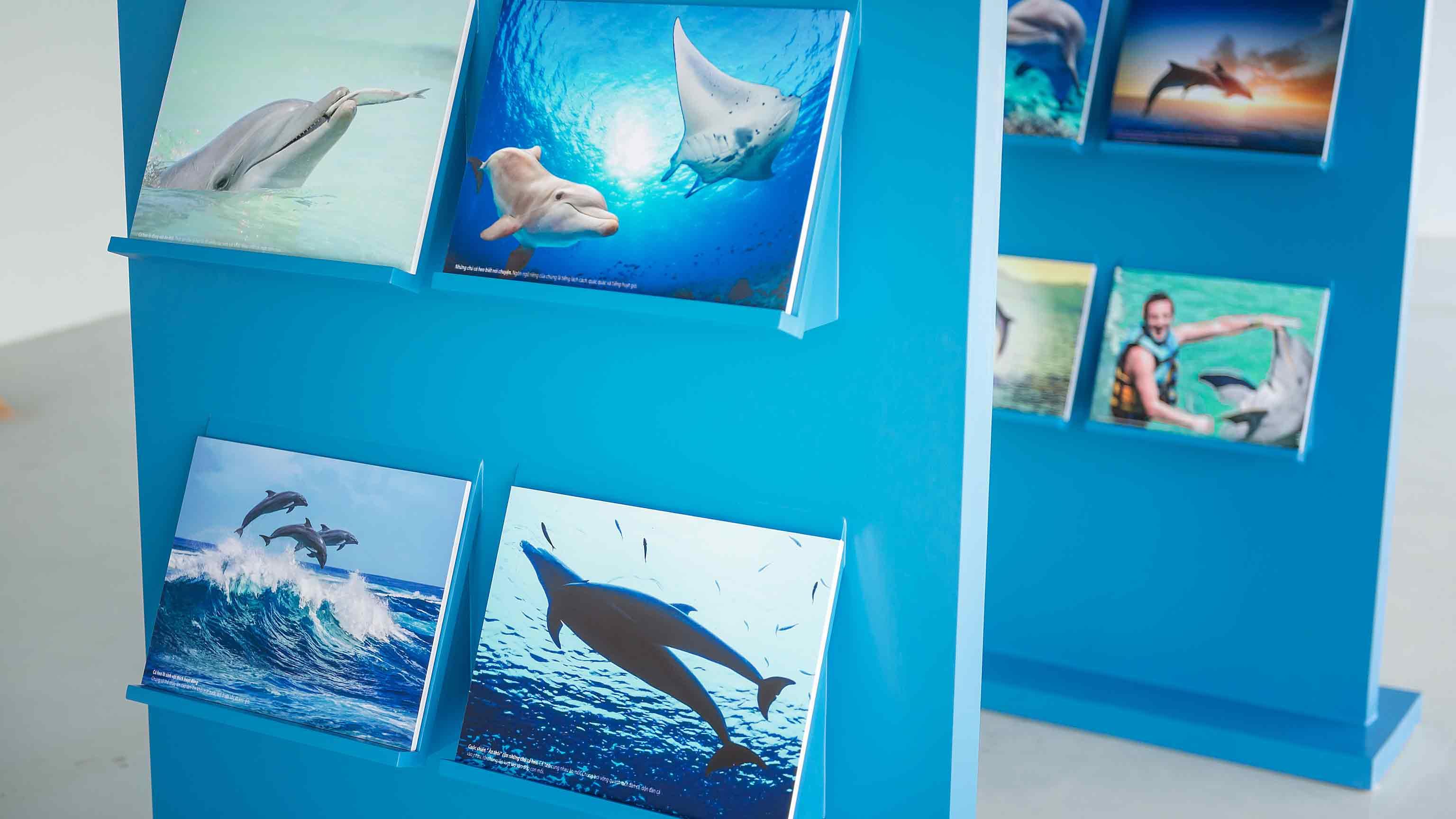 Bảo tàng đại dương tại Dolphinarium