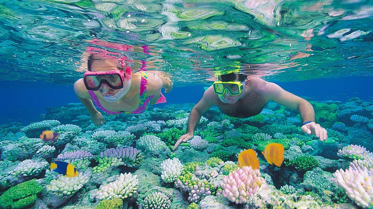 Chỉ cần bơi là là trên mặt biển cũng có thể dễ dàng chiêm ngưỡng những rạn san hô muôn màu muôn vẻ