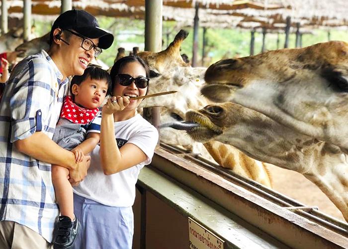 Khám phá vườn thú mở duy nhất tại Thái Lan - Safari World