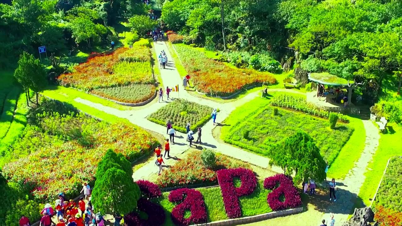 Vườn hoa rực rỡ sắc màu ở núi Hàm Rồng