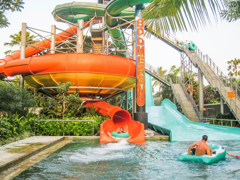 Đường trượt Boomerang thu hút rất nhiều du khách