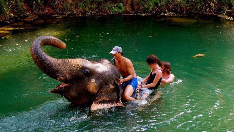 Ngoài ra, các bạn còn có thể cùng nhau nô đùa dưới làn nước xanh mát