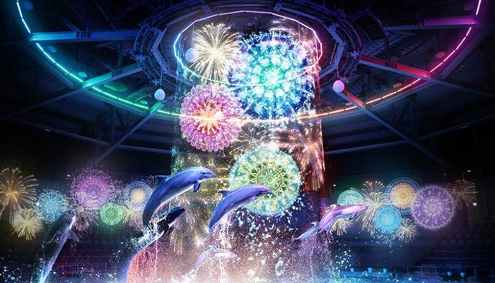 Màn trình diễn ánh sáng kết hợp xiếc cá heo luôn được du khách mong đợi nhất khi đến với Aqua Park Shinagawa Tokyo.