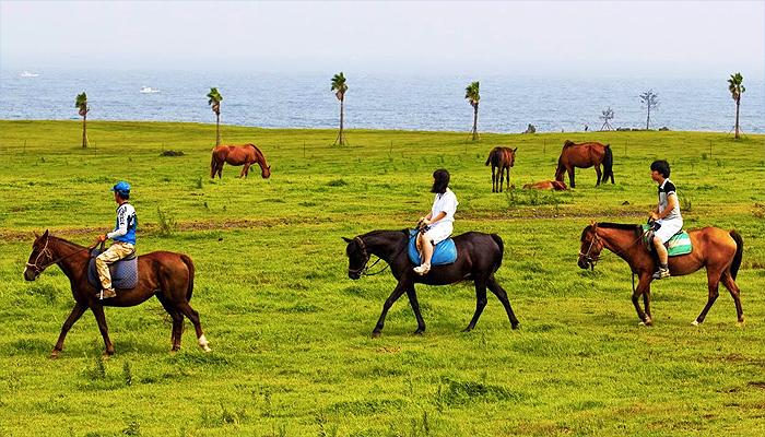 Hoạt động cưỡi ngựa khám phá cảnh đẹp ở phía Đông đảo Jeju luôn được du khách yêu thích.
