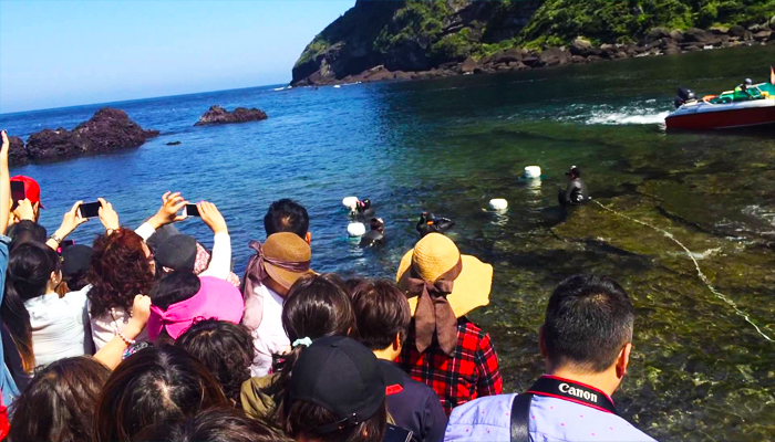 Ngắm nhìn và lắng nghe câu chuyện về haenyeo ở Jeju sẽ là trải nghiệm cực kì thú vị mà bạn có được đấy.