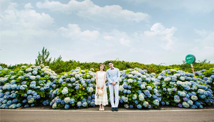 Đây cũng là điểm chụp hình cưới lí tưởng của các bạn người Hàn đó nha.