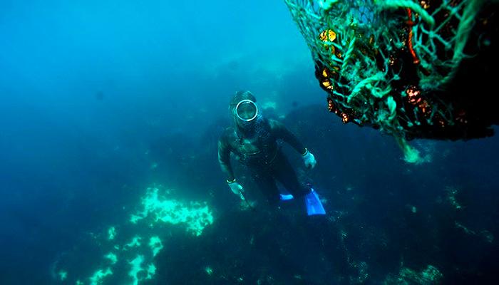 Không cần bất kì thiết bị lặn chuyên nghiệp nào, các haenyeo có thể lặn sâu tới 20m.
