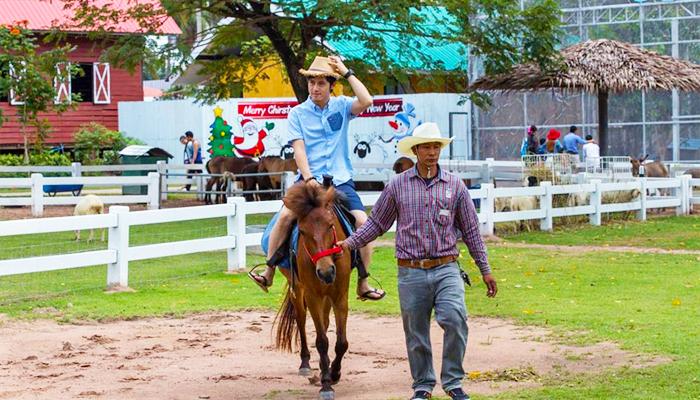 Không cần có kinh nghiệm, bạn vẫn có thể cưỡi ngựa với sự hỗ trợ của hướng dẫn viên.