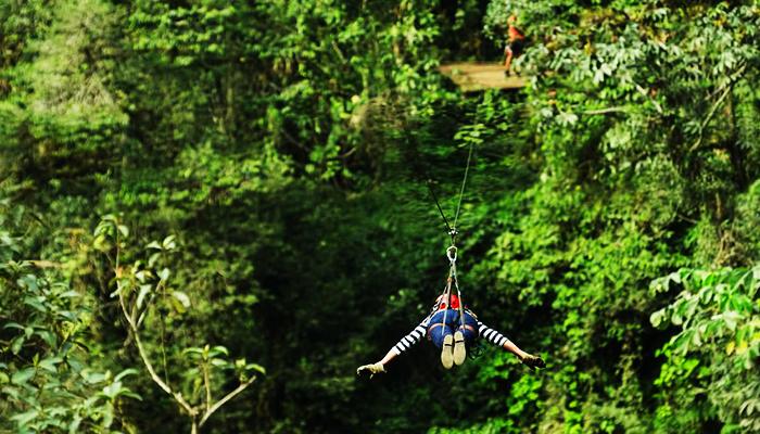 """Hóa thành """"người rừng"""" giữ thiên nhiên Chiang Mai."""
