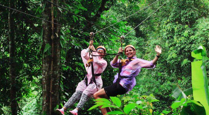 flight-of-the-gibbon-chiangmai