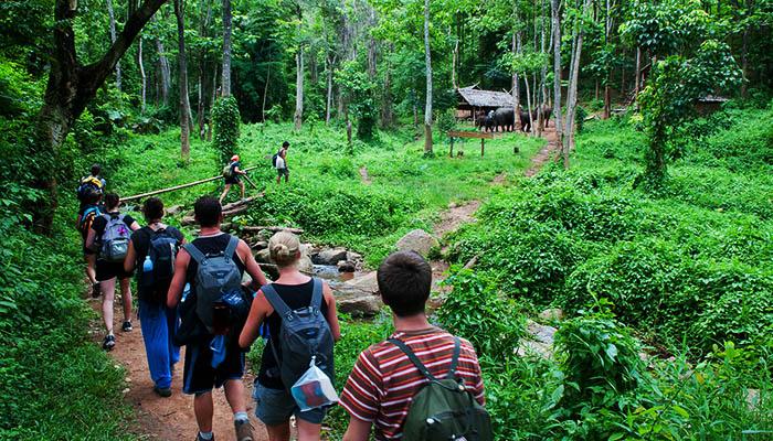 Hoạt động trekking rừng núi thu hút nhiều du khách.