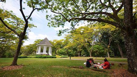 Hình đại điện của danh mục Vườn bách thảo Singapore Botanic Gardens