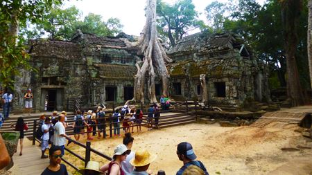 Hình đại điện của danh mục Ta Prohm Temple - Đền Ta Prohm