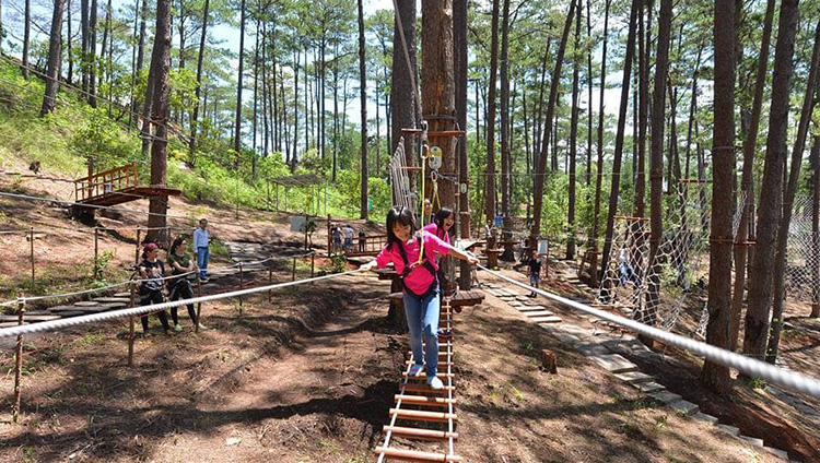 combo-high-rope-course-dalat-new-alpine