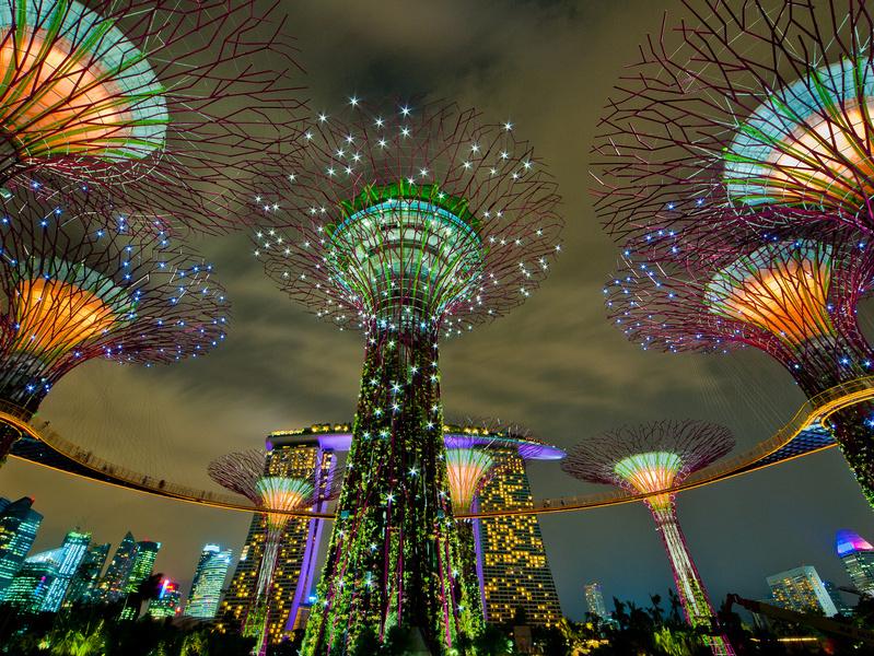 Các siêu cây rực rỡ tại Gardens by the Bay vào ban đêm