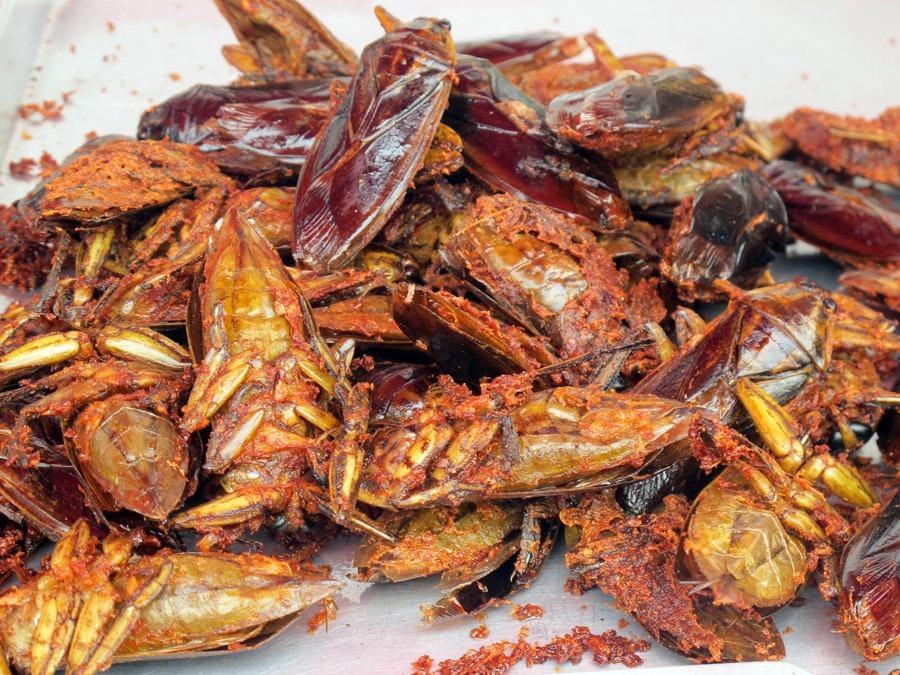 Snack côn trùng Bangkok - Bọ nước rang muối