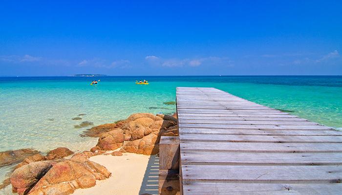 có gì ở đảo coral pattaya