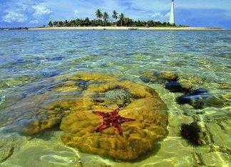 5 hòn đảo đến rồi chỉ muốn ở luôn Langkawi