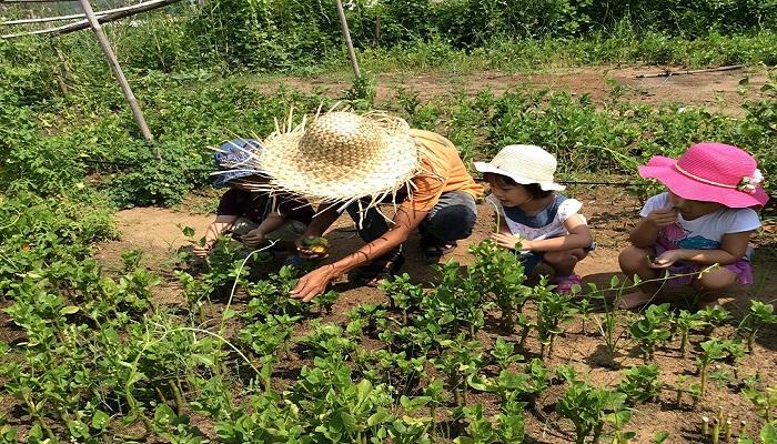 Family Garden Thảo Điền
