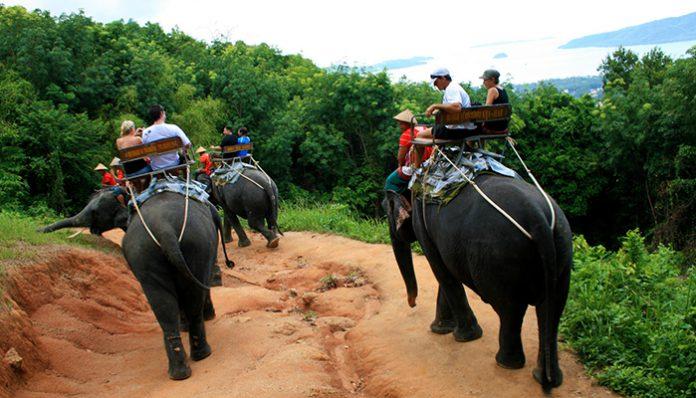cưỡi voi phuket