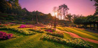 kinh nghiệm du lịch Chiang Rai tự túc
