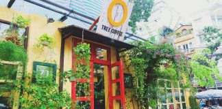 Ohi Tree & Coffee