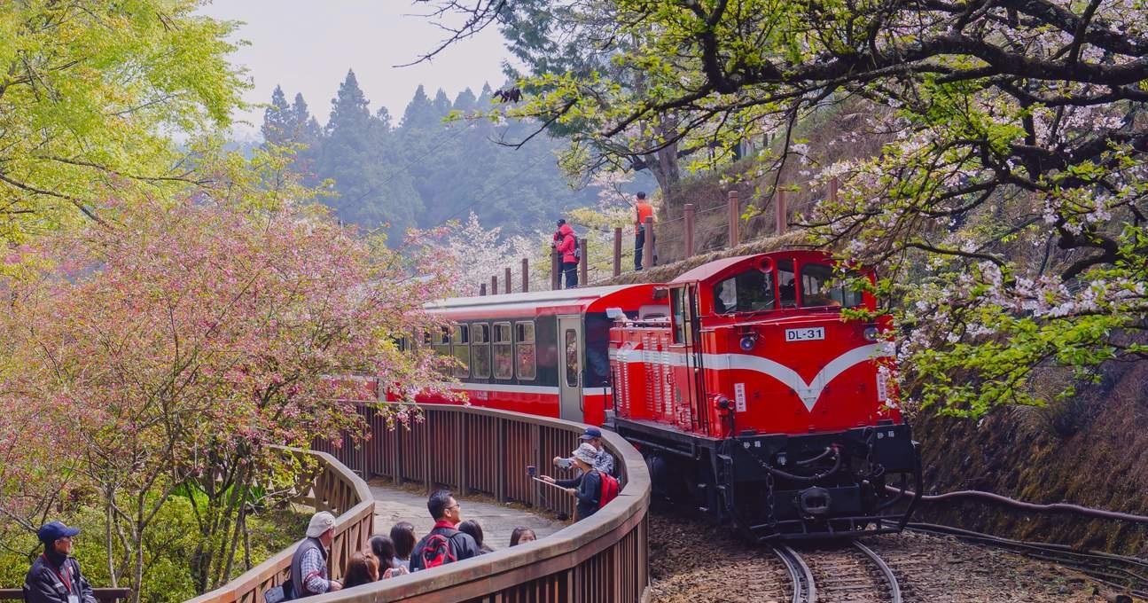 Hãy đến Taroko Gorge bằng tàu hỏa vào mùa xuân để ngắm hoa anh đào