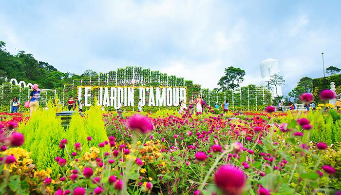 Vườn với hàng trăm bông hoa đủ màu sắc đang khoe sắc