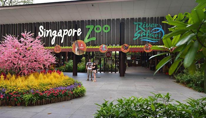 Singapore Zoo hay River Safari