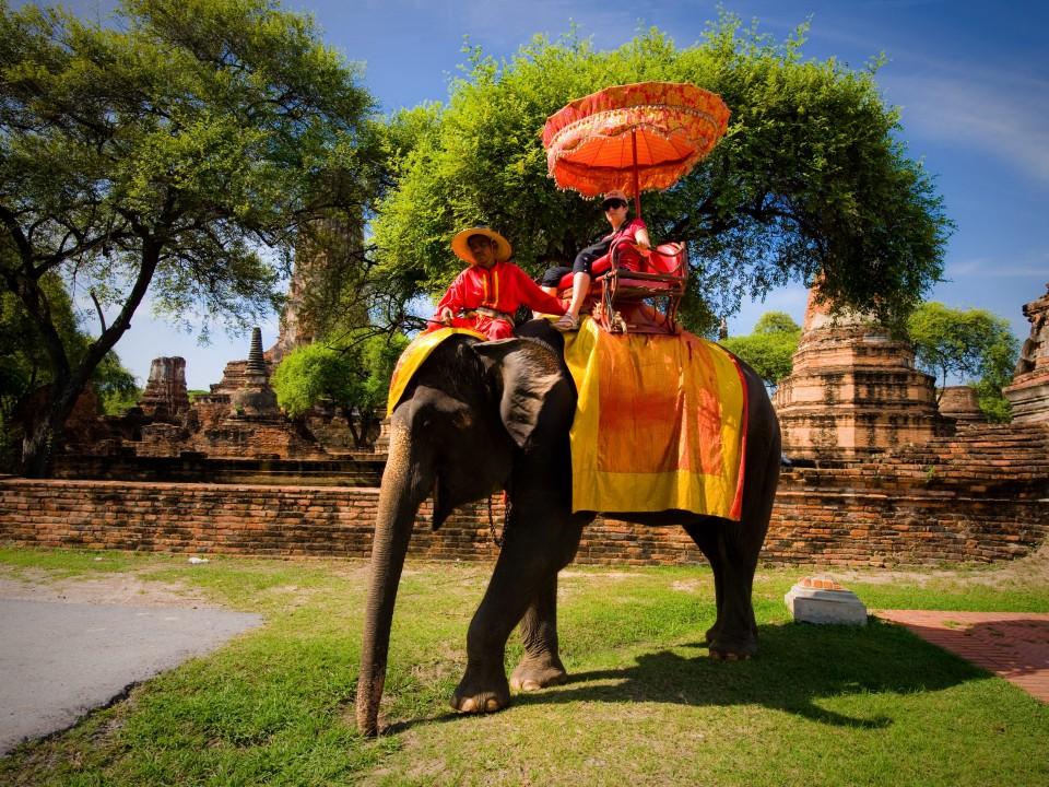 Cưỡi voi tham quan Ayutthaya là hoạt động khá thú vị