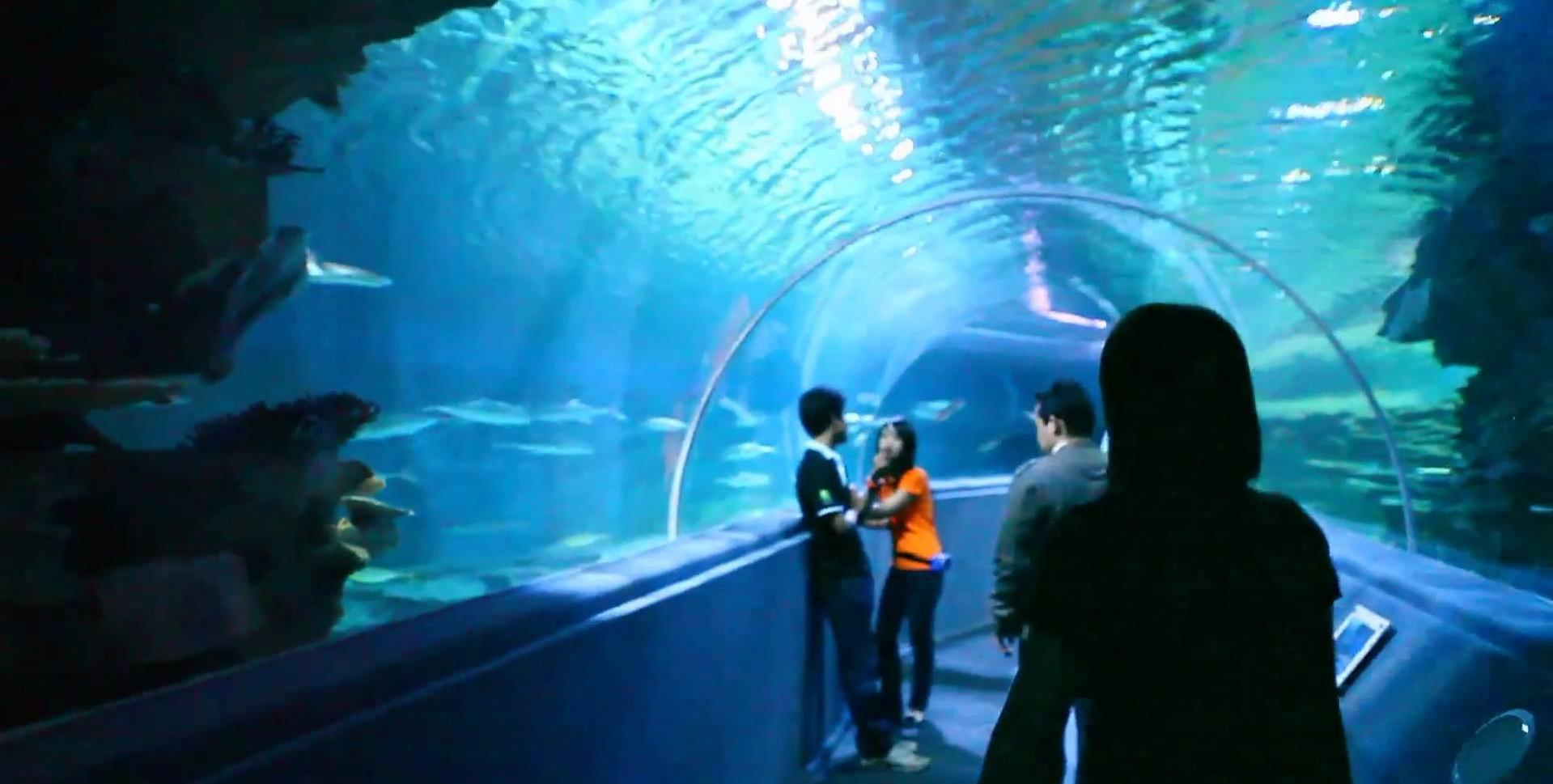 Đường hầm dài 133 m nắm giữ kỷ lục Guinness
