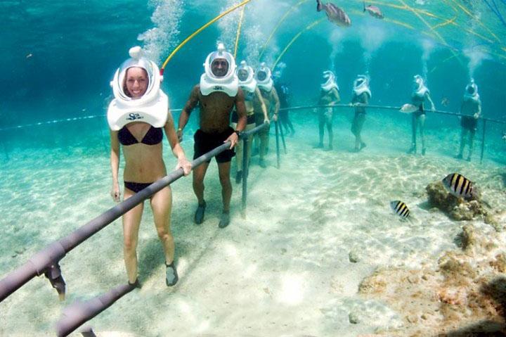 Đi theo hành lang để đảm bảo an toàn cho bản thân và hệ sinh thái biển