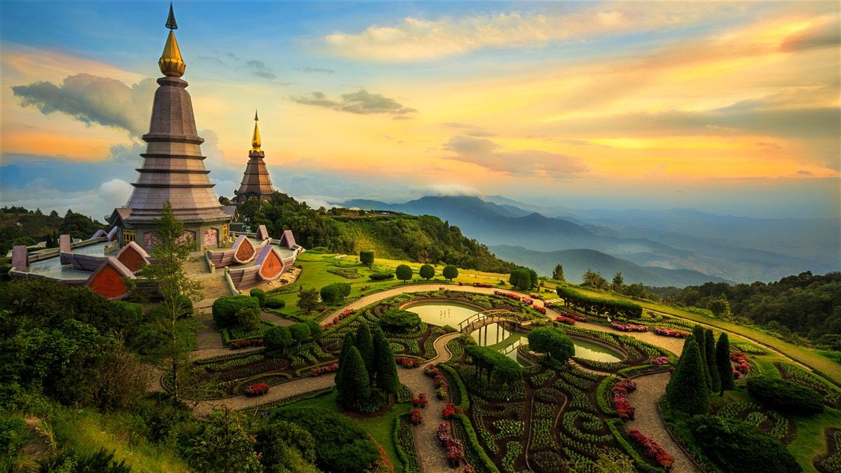 """""""Bông hồng"""" Chiang Mai xinh đẹp và ngát hương"""