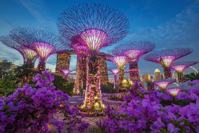 Vẻ đẹp siêu thực của vườn siêu cây trong Gardens by the bay
