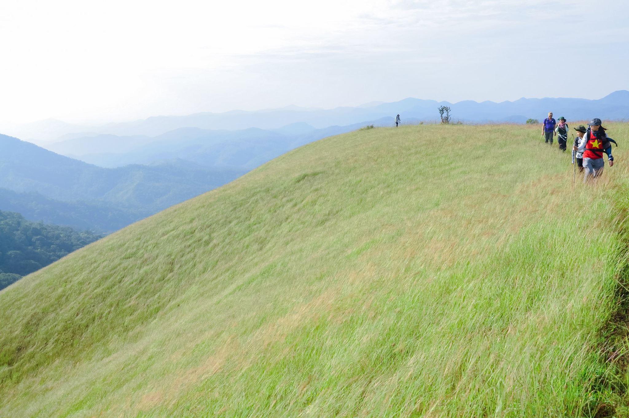 Băng qua những đồi cỏ đẹp mơ mộng như này, mệt mỏi vĩnh viễn chẳng còn