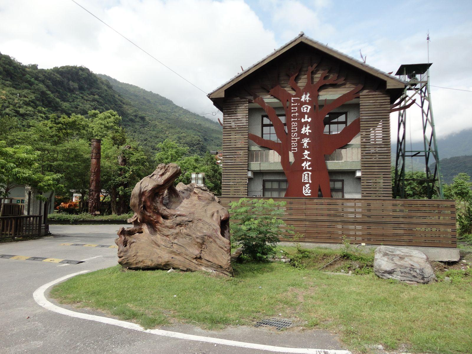 """Khu khai thác gỗ vẫn còn lưu giữ những """"tác phẩm"""" từ thời Nhật chiếm đóng"""