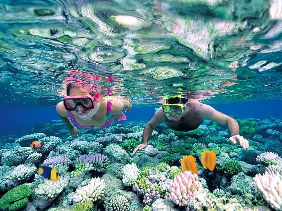 """Quần đảo An Thới là """"địa chỉ"""" ngắm san hô tuyệt nhất Phú Quốc"""
