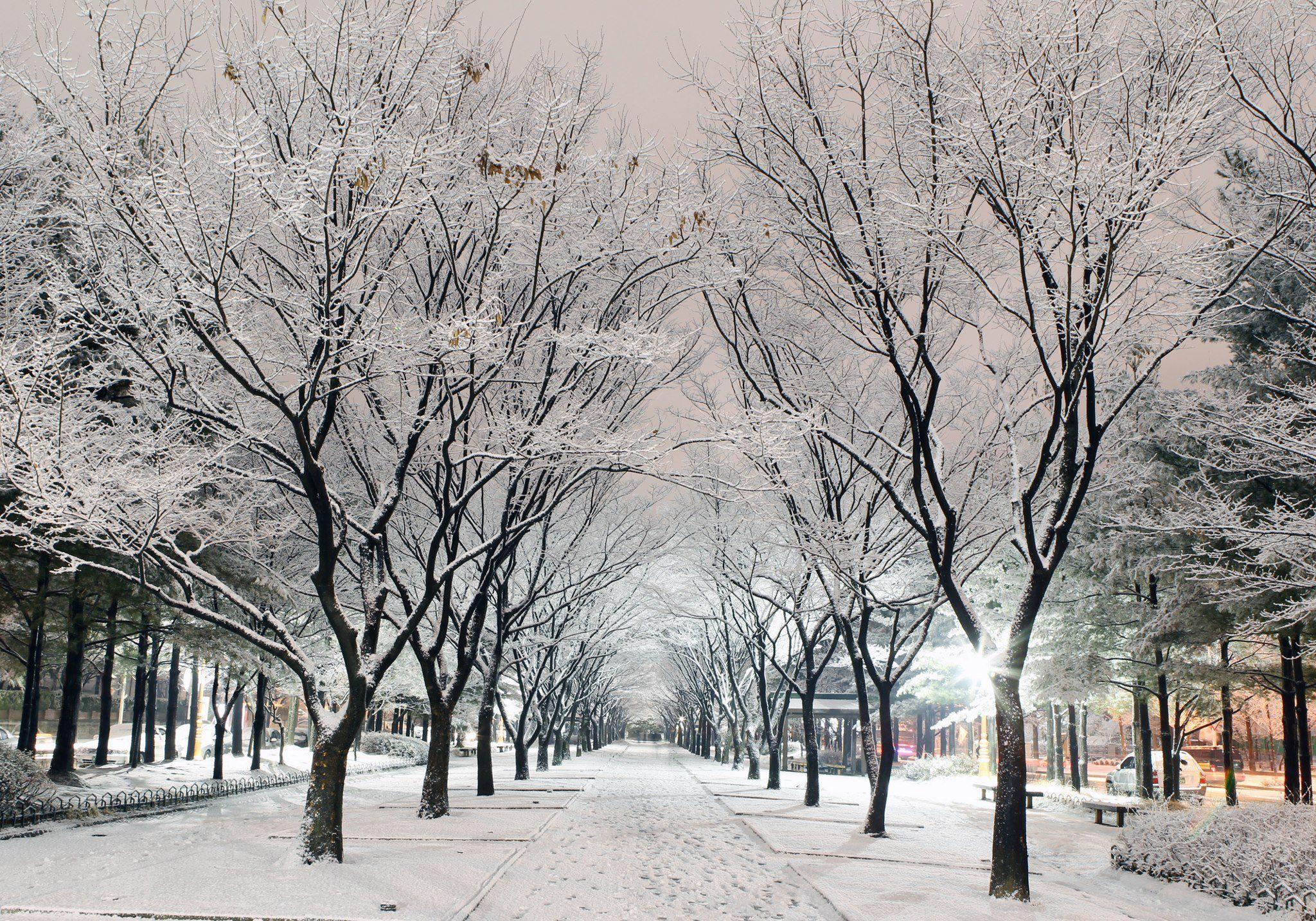 Phong cảnh Hàn Quốc mùa đông đưa du khách lạc vào miền cổ tích