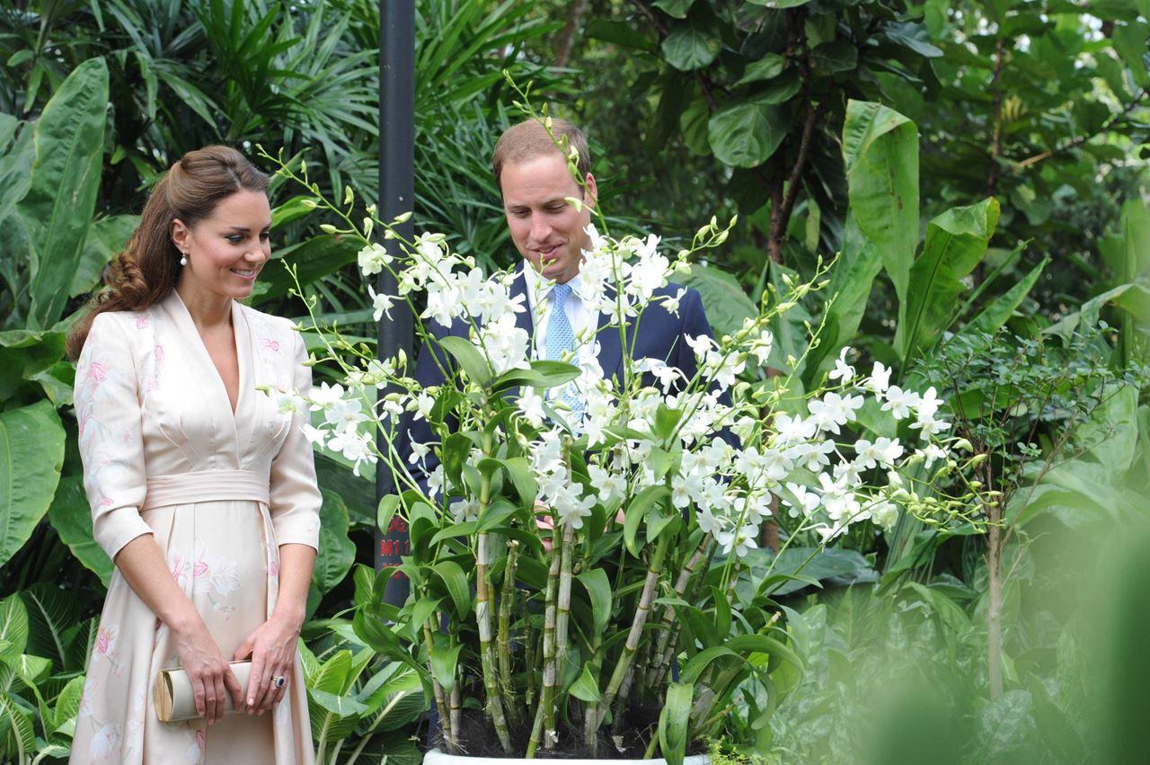 Ai cũng rất hào hứng khi được chạm tay vào những bông lan thơm ngát!