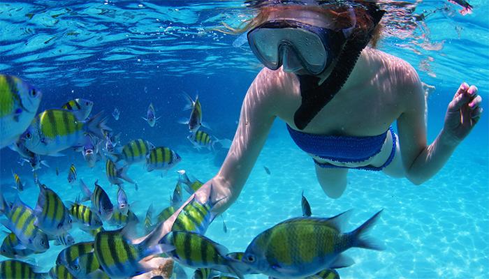 Lặn bằng ống thở ngắm san hô là một những hoạt động thú vị ở tàu Party Boat.