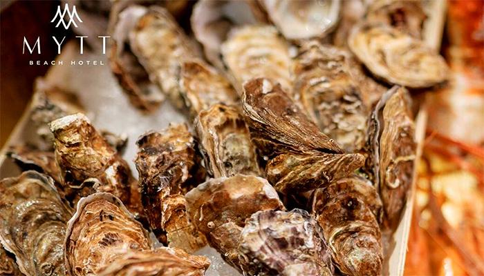Hàu tươi của The Kitch Restaurant là loại hàu được tuyển chọn nghiệm ngặt.