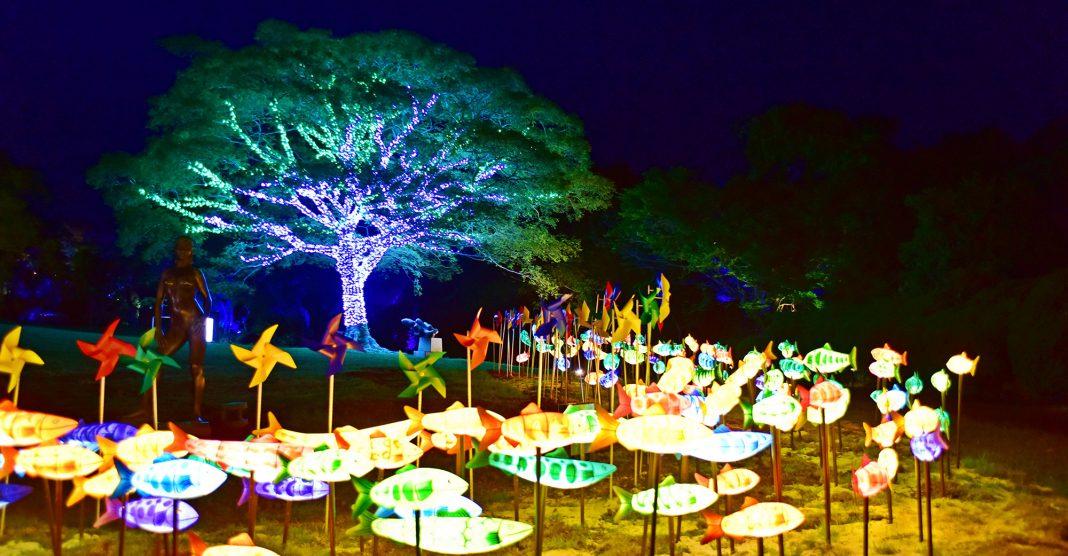 jeju-light-garden-and-photo-studio-cover