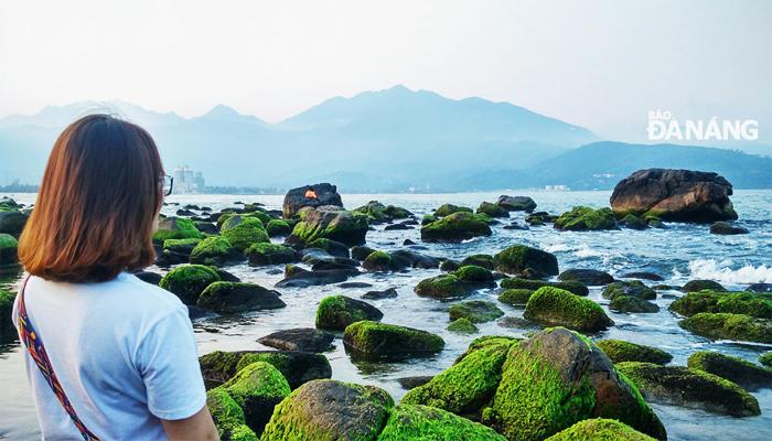 Bãi đá phủ rêu xanh luôn đẹp trong những tấm hình checkin của bạn. (Nguồn: baodanang)